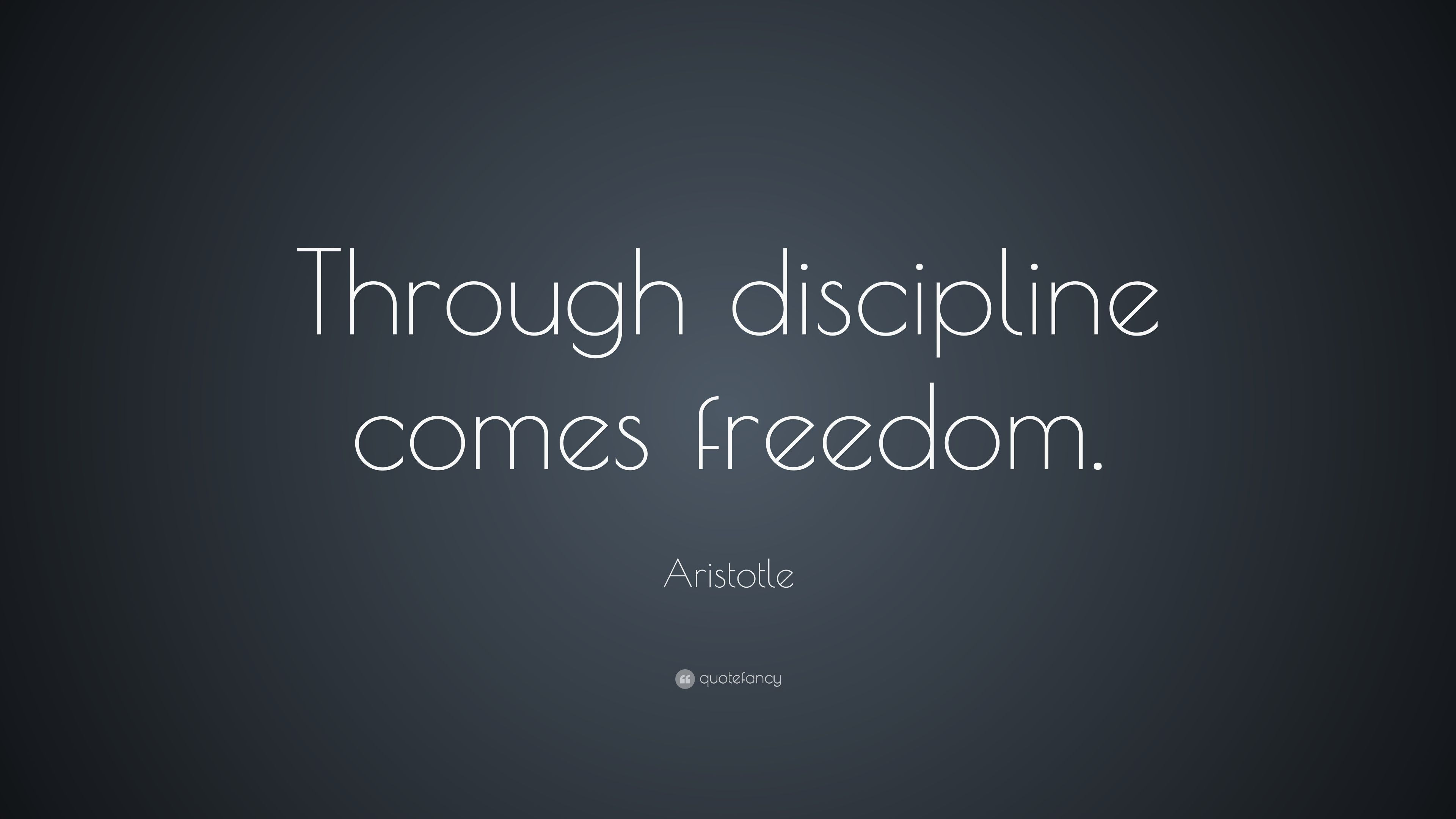 discipline equals freedom free pdf